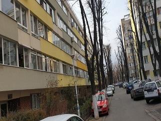 Particular vand apartament 2 camere Gara Obor, str Caminului
