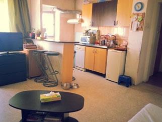 Particular vand apartament 4 camere Theodor Pallady