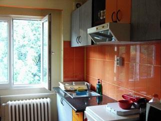 Particular vand apartament 3 camere Emil Racovita