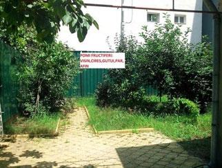 Proprietar vanzare casa Stefan cel Mare, Vasile Lascar