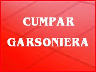 CUMPAR garsoniera in zonele Titan, Dristor, Vitan
