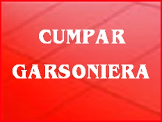 cumpar-garsoniera_80.jpg
