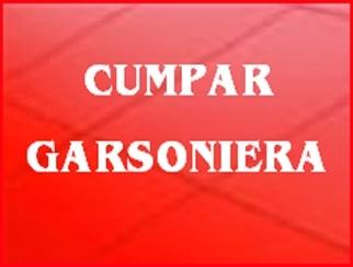 cumparari_garsoniere_523.jpg