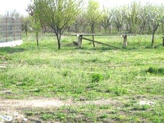 Teren intravilan in zona de vile de vanzare ALEXANDRIEI (TEIUS)