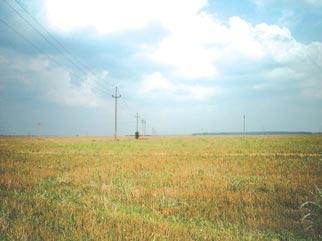 De vanzare teren extravilan TUNARI zona DIMIENI