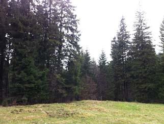 VANZARE teren in PREDEAL Judetul Brasov