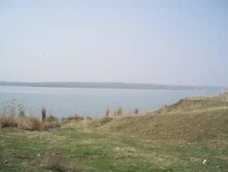 VANZARE teren Judetul CONSTANTA – Lacul Tasaul